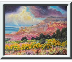 ghost Ranch Chamisa white frame11x14